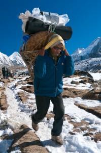 Jay-Nichols-sherpa